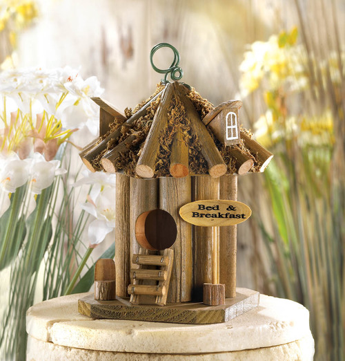 Bed & Breakfast Bird House