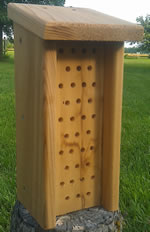 Mason Bee House-Slanted Roof